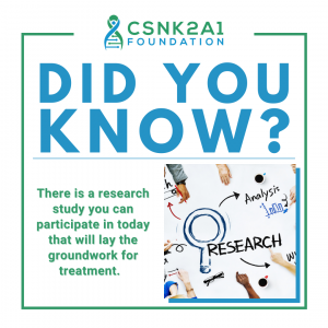 Did you Know Simons Searchlight research study